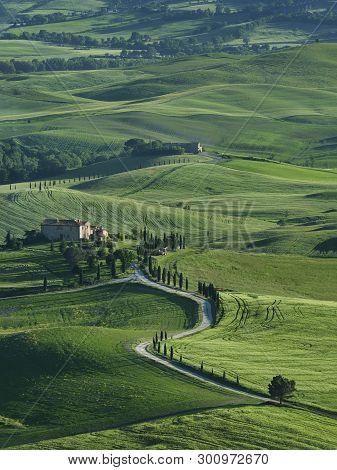 Idyllic Landscape Of Rural Area Of Tuscany, Italy