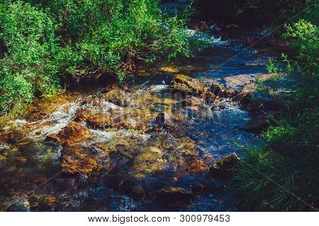 Mountain Creek With Stones Near Green Grass In Sunny Day. Clean Water Stream In Fast Brook In Sunlig