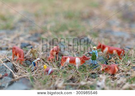 Miniature People : Gardener Working On The Field , Farmer And Gardening Concept