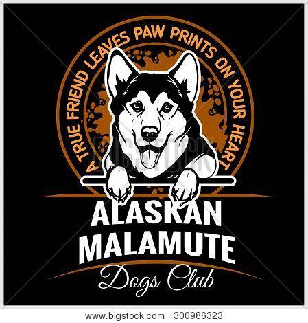 Alaskan Malamute - Vector Illustration For T-shirt, Logo And Template Badges