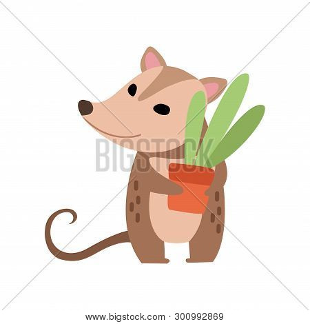 Cute Opossum Holding Flower Pot With Houseplant, Adorable Wild Animal Cartoon Character Vector Illus