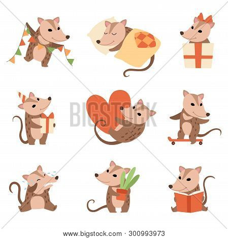 Cute Opossums Set, Adorable Wild Animals Cartoon Characters In Various Situations Vector Illustratio