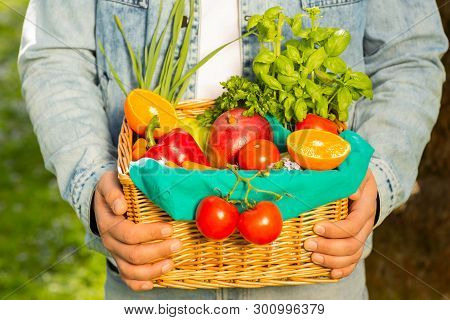 Basket With Vegetables And Fruits In The Hands Of A Farmer Background Of Nature. Concept Of Healthy
