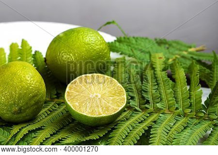 Lime On A White Plate With Green Leaves. Dark Gray Background. Close-up. Lime Cutaway.