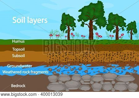 Soil Layers. Diagram For Layer Of Soil. Soil Layer Scheme With Grass, Earth Texture, Groundwater And
