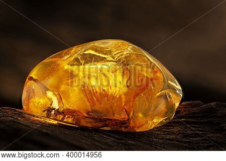 Beauty Of Natural Raw Amber. A Piece Of Yellow Transparent Natural Amber On Piece Of Stoned Wood