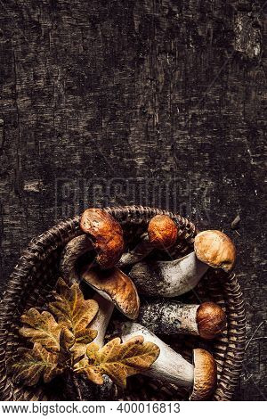 Autumn Composition With Porcini Mushrooms And Oak Leaves On Dark Old Wooden Background. Flat Lay, Co