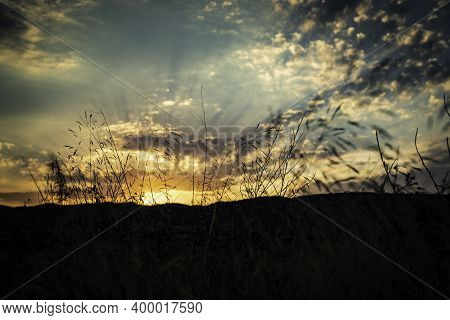 Sunset On A Cloudy Day With Sun Rays Seen Through Silhouette Grass With Copy Space