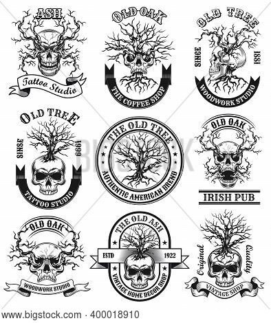 Old Oak Emblems Set. Monochrome Design Elements With Human Skulls, Dead Trees And Text. Gothic Conce