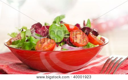 Closeup On A Fresh Salad Bowl