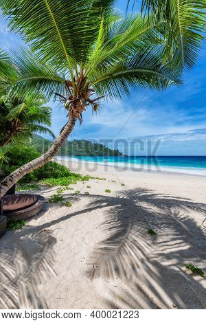 Beautiful Beach With Palms And Turquoise Sea In Jamaica Island. Summer Vacation And Tropical Beach C