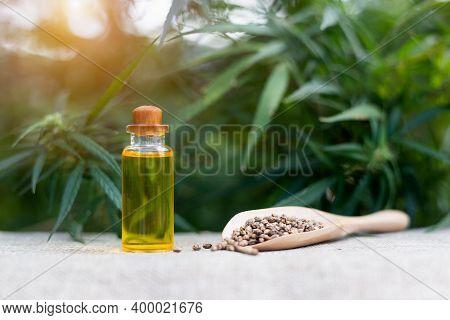 Glass Bottle With Cbd Hemp Oil And Hemp Seeds, Study Idea, Product Extraction, Cbd Hemp Oil, Herbal