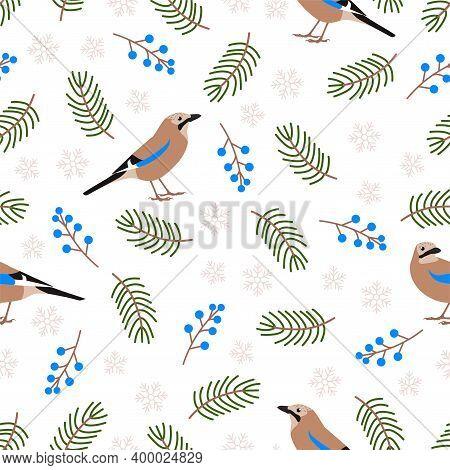 Cute Eurasian Jay Bird. Vector Seamless Pattern.