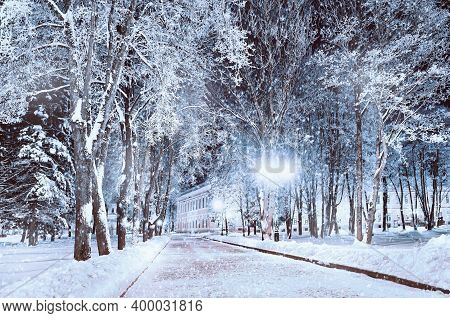 Christmas background, winter Christmas night landscape, winter street in the park with frosty trees and bright shining lanterns, winter night landscape with Christmas mood