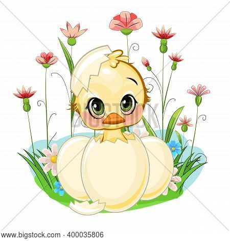 A Little Duckling Hatched From An Egg. Funny Chick. Cute And Funny Baby Bird. The Isolated Object On