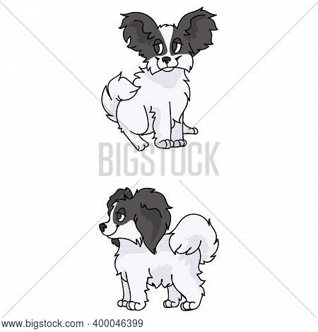 Cute Cartoon Papillon Puppy Breed Vector Clipart. Pedigree Kennel Doggie Breed For Dog Lovers. Pureb