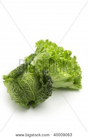 cabbage and lettuce