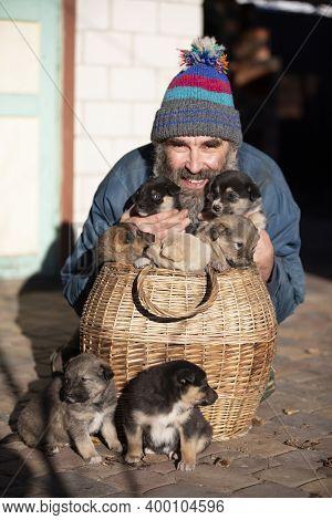 An Elderly Man With Small Puppies Sitting In A Wicker Basket. Dog Breeder. Puppy Seller. Dog Kennel.
