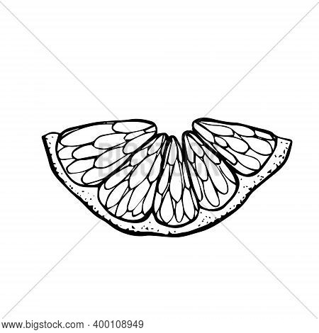 Cut Off A Semicircle Of A Citrus. A Slice Of Tangerine Lemon Orange Hand Drawn Black Outline Doodle