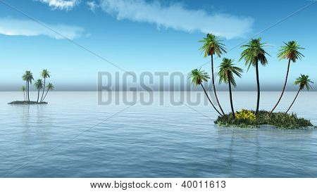 Palms on a small ocean island