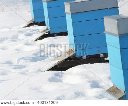 Winter Country Scene With Beehives Covered With Snow
