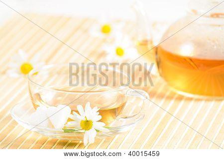 teacup with herbal chamomile tea