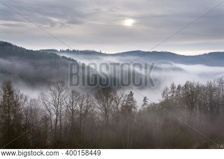 Valley With Forest Hiding In Fog, Autumn Or Winter Foggy Morning