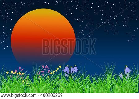 Beautiful Night Meadow With Orange Sun. Sunrise Landscape With Copy Space. Nighttime Background With