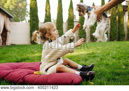 Kid takes in hands funny dog in the garden