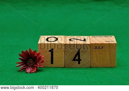 14 July On Wooden Blocks With An African Daisy On A Green Background