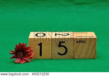 15 April On Wooden Blocks With An African Daisy On A Green Background