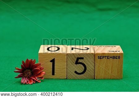 15 September On Wooden Blocks With An African Daisy On A Green Background