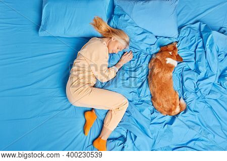 Above View Of Senior Woman In Nightwear Has Good Deep Sleep With Dog Poses On Blue Bedclothes Lies I