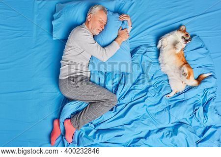 Sleeping Handsome Aged Man Embraces Pillow And Sleeps Peacefully In Bed His Dog Lies Near On Blue Be