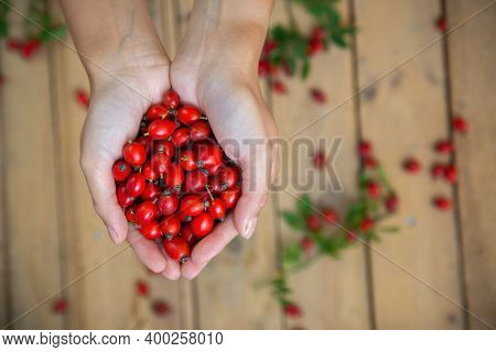 A Handful Of Fresh Rosehips In Front Of Wooden Desk From Above
