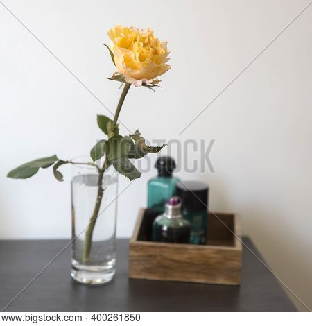 Orange Rose Candlelight In Glass Vase With Wooden Box With Perfume In Green Perfume Close Up Against