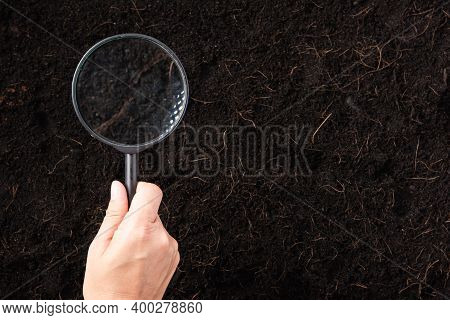 Top View The Hand Of Researcher Woman Holding A Magnifying Glass On Black Soil At The Garden To Rese
