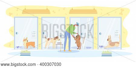 Joyful Meeting Owner With Pet In Hotel For Dogs. Elderly Man In Hat With Cane Came To Pick Up His Do