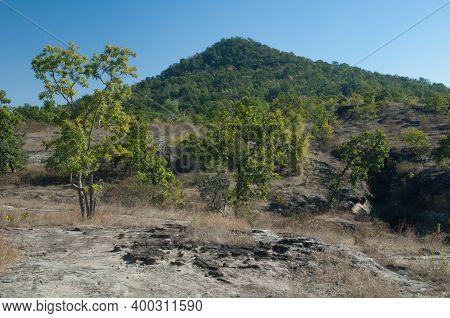 Landscape In Bandhavgarh National Park. Madhya Pradesh. India.