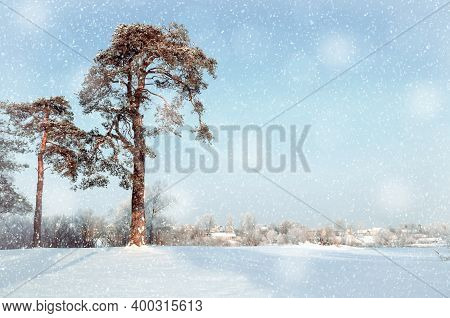 Winter landscape, forest winter trees and village at the horizon, winter rural landscape in sunny winter weather. Winter rural landscape, winter snowy nature, winter countryside in sunny winter day