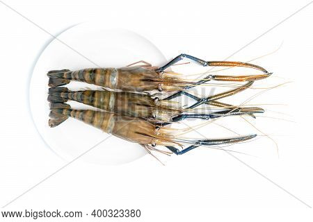 Close Up Fresh Shrimp And Long Arm Isolated On White Background. The Giant River Prawn On White Back