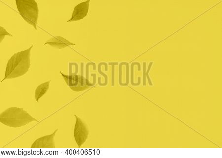 Autumn Or Fall Banner With Copy Space. Back To School. Frame With Autumn Leaves Toned In Trendy Illu