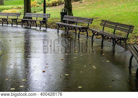 Empty Park Benches In The Rain. Autumn City Park With Wet Asphalt.