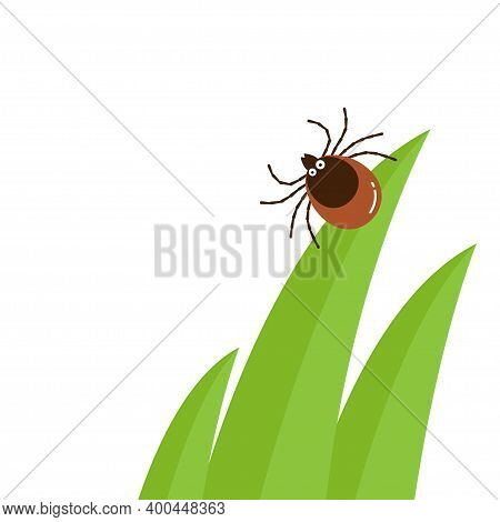 Cartoon Character Mite In The Tall Green Grass Flat Vector Illustration, Mite Hiding In The Grass, T