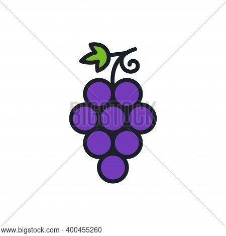 Grapes. Grape Icon. Linear Color Icon, Contour, Shape, Outline. Thin Line. Modern Minimalistic Desig