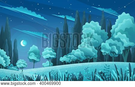 Grasses, Stems, Spacious Meadow Or Field, Bushes, Shrubs, Variety Of Deciduous Trees, Night Dark Sky