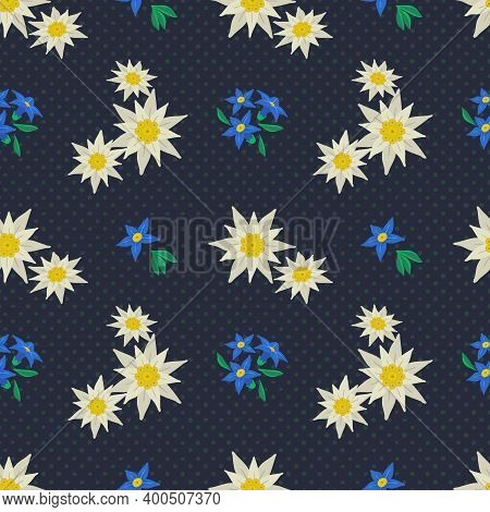 Edelweiss Floral Polka Dots Hand Drawn Seamless Vector Pattern. Star Shape Flower Symbol Of Alpes. M