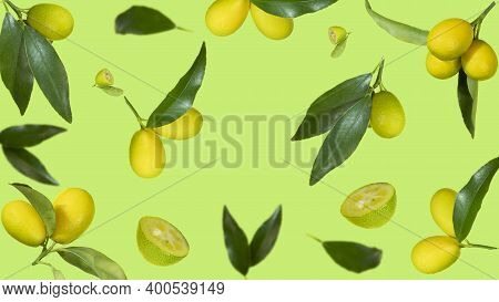 Fresh Kumquat Levitation With Leaves Falling In The Air. Cut And Whole Kumquat Isolated On Green Bac