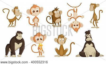 Cute Funny Monkeys Colorful Cartoon Collection. Set Of Vector Chimpanzee In Diferent Poses. Wildlife