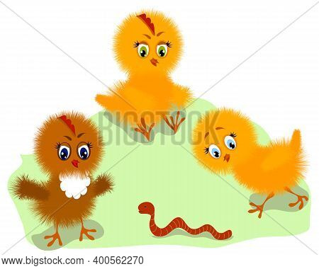 Colored Illustration With Fluffy Chickens.set Of Cute Fluffy Chickens In Color Vector Illustration.